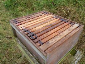 Bee hives + twin Nucleus Hive (unused) + beekeeping equipment