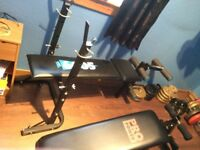 weights,bench,sit up bench,bars,punch bag,gloves,mitts,wall mount chin up,