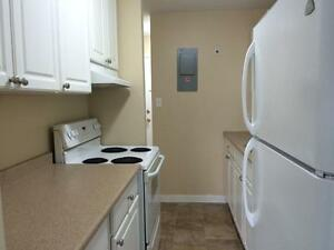RECENTLY UPDATED 2 BD IN CENTRAL LOCATION! 325- 67 Notch Hill Rd Kingston Kingston Area image 3