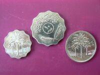 30 Iraq coins worth approx £100