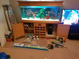 5ft solid oak fish tank with full setup and extras