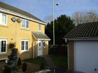 3 Bedroom Semi-Detached House to Let - Anthony Hill Court, Pentrebach