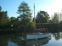 Cornish Shrimper 19' Sailing Boat with 5HP Honda 4 stroke outboard
