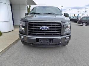 Ford F-150 Cab SuperCrew 4RM 157 po XLT SPORT