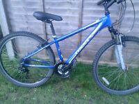 Dawes xc1.1 bike