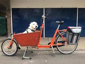 Bakfiets Short Cargo Bike Bicycle - Very Reliable!