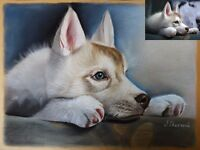 Pet portraits from photos - perfect for a gift !