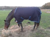 """Horse Rugs for sale - 6'6"""""""