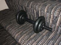 2 dumbells 25kg with adjustable weights only £30