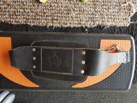 Weights dipping belt