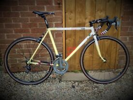 Raleigh Pro Tour 56cm bike