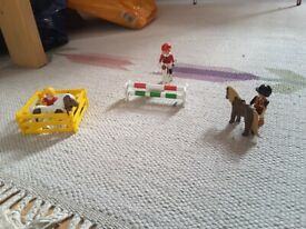 Playmobil pony set