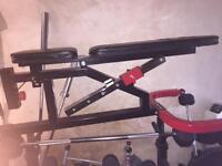 Bodymax 3in1 gym bench