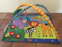 Baby Activity Gym