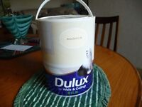 Emulsion Paint Magnolia at least 5 litres