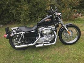 Harley Davidson 883 sportster Lo