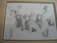 Large framed DRAWING of hunting dogs labs/retrievers