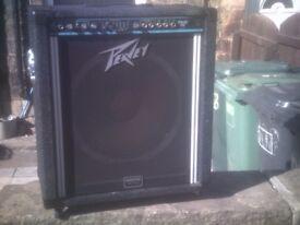 peavey bass amp 15 inch speaker.