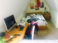 HUGE 2nd floor room in modern house with all bills and a dog inc for £500/pm
