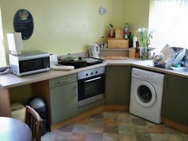 very nice self-contained rooms - Whimple near Exeter - all bills inc - available 7th July