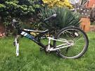 Raleigh Bike Frame