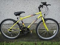 24INCH RECKLESS MOUNTAIN BIKE COST 350 SUPERB