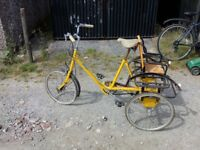 Vintage Pashley Plus yellow Tricycle
