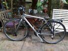 Orbea Bike For Sale