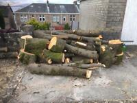 Free Firewood for Collection in Port Glasgow