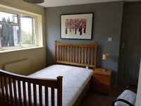 Bright, newly refurbished room to let in Winchester