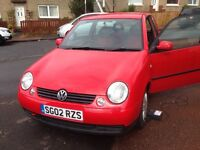 Lupo for sale may swap