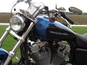 2004 harley-davidson XL883C Custom   Stage 1 Exhaust and Progres London Ontario image 17