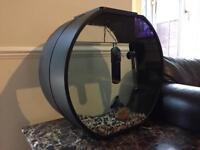 Deco 54L Fish Tank