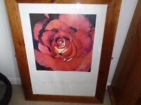 Large picture in wooden frame