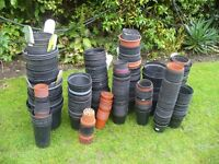 USED PLASTIC PLANT POTS APPROX 300