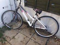 Apollo Endeavour hybrid bike