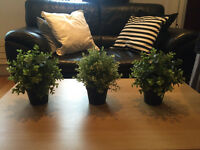 Three artificial plants