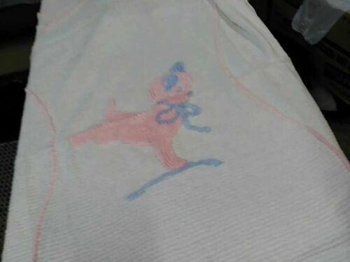 Vintage Chenille Baby Pastel Dog Bedspread  Blanket 66