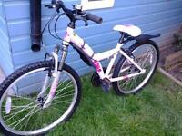 "Real Pretty, Roadworthy, Apollo Girls 24"" Wheel Bike****FREE DELIVERY HULL****"