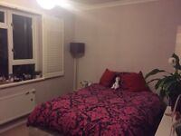 Flat Share/Double room in Spacious flat with communal gardens. Young professional required