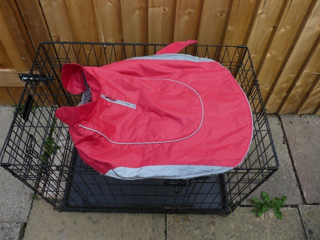 Pets At Home Waterproof Dog Coat Large In North Wingfield