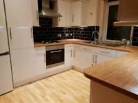 Domestic and commercial cleaner (cleaning) prices starting from £20