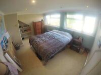 Short-term double en-suite room to sub-let