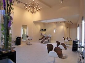 Confident and driven hairstylist / hairdresser wanted for friendly boutique salon