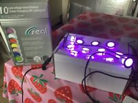 12 low voltage colour changing lights