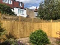 Fencing and Gate Contractor