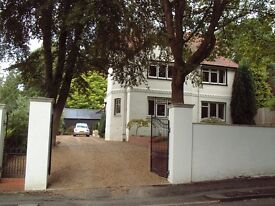 Camberley Room to Rent