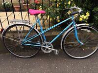 Rudi Altig vintage ladies dutch style racer racing bike