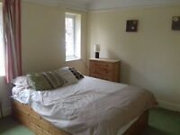 DOUBLE BEDROOM IN A SHARED HOUSE - PLEASE READ AD - MUST BE AN ANIMAL LOVER