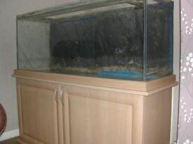 Aquarium and cabinet